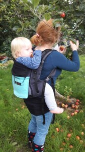 A mum is back carrying her large one year old whilst picking apples from a tree.